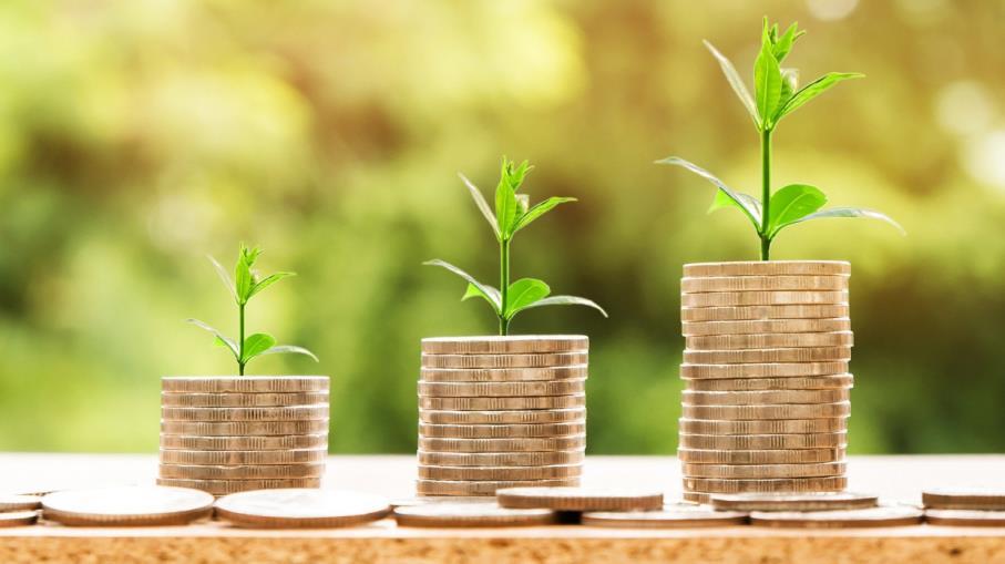 Dividendo azionario: cos'è e come si calcola rendimento