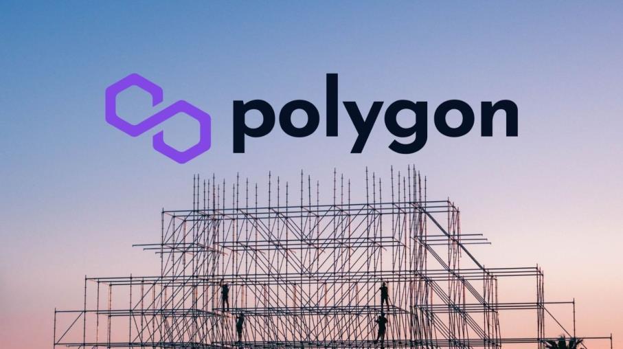 MATIC: la capacità di adattamento dietro il successo di Polygon