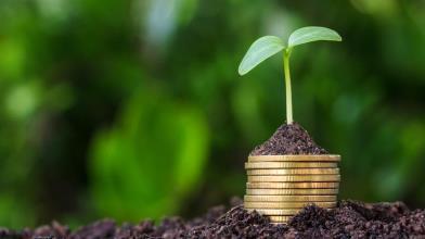 BTp green: cosa sono e come funzionano i bond verdi del Tesoro