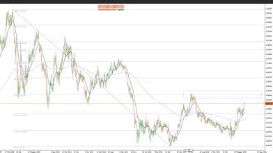 Analisi Forex: EUR/USD, aumentare la  scommessa contro il dollaro