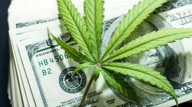 Reddit: società cannabis nel mirino, sarà un nuovo caso GameStop?