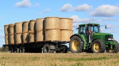 Materie prime: nuovi rialzi in vista per mais, soia e grano?
