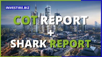 COT Report + SHARK Report